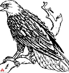 999x995 drawing clipart eagle [ 999 x 995 Pixel ]