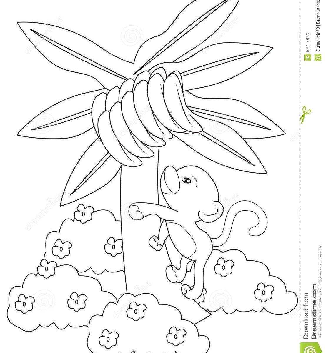 Banana Tree Drawing At Getdrawings