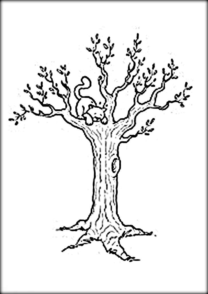 bare trees drawing at getdrawings  free download