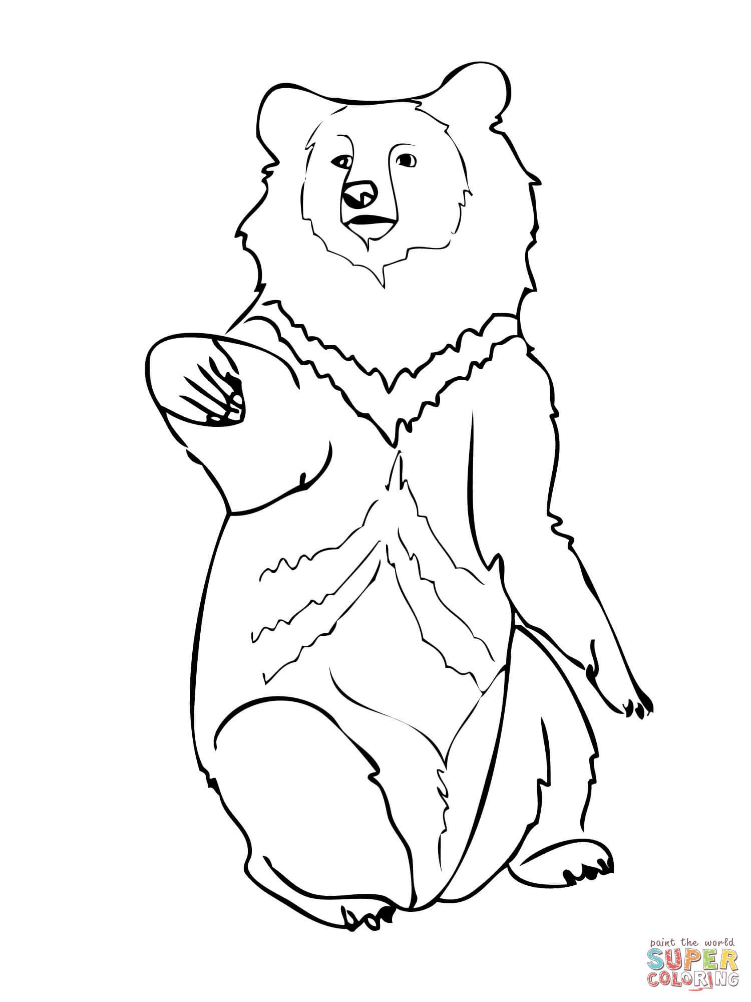 Bear And Cub Drawing At Getdrawings