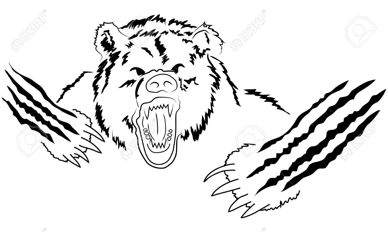 Bear Growling Drawing At Getdrawings