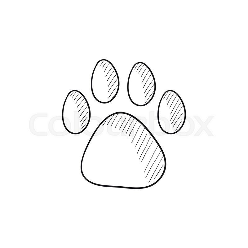Dog Paw Prints Drawing At Getdrawings Com