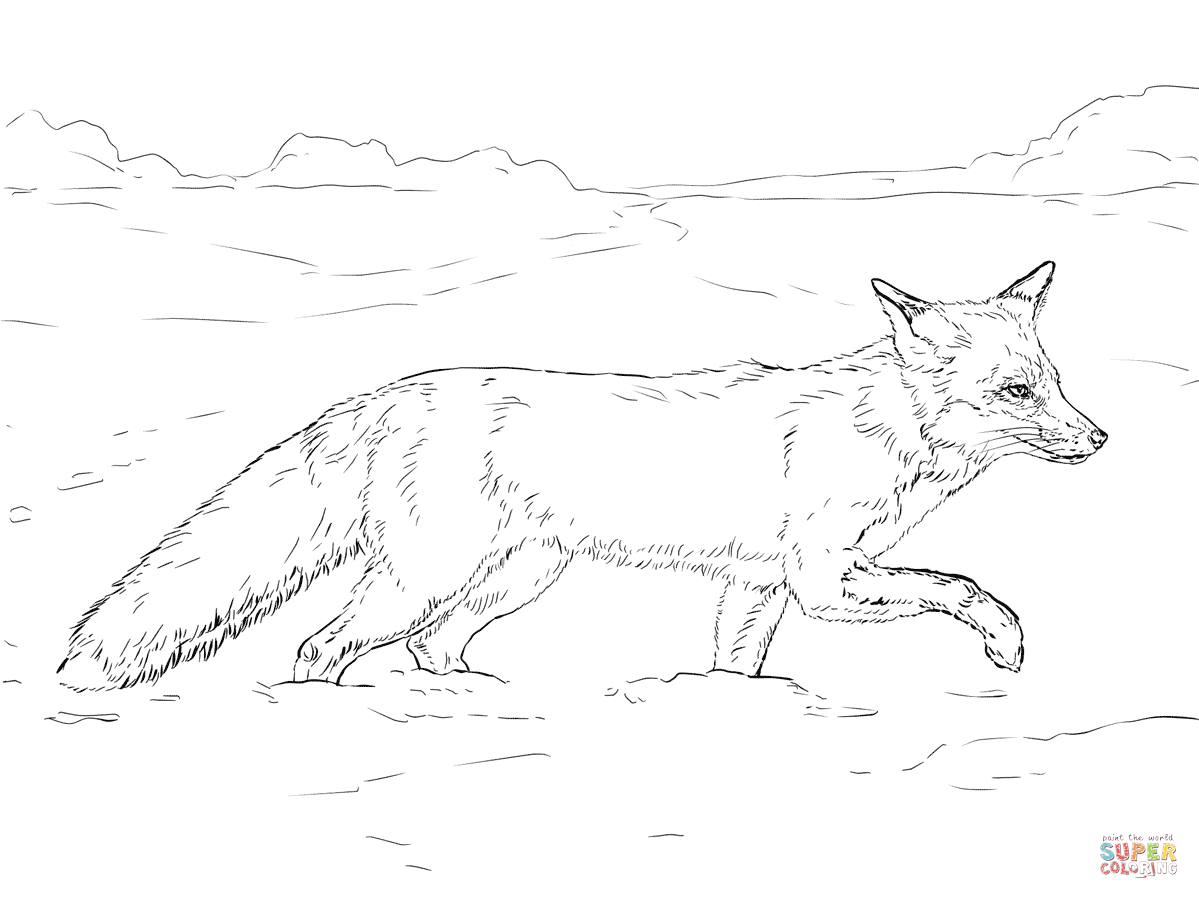 Black And White Fox Drawing At Getdrawings