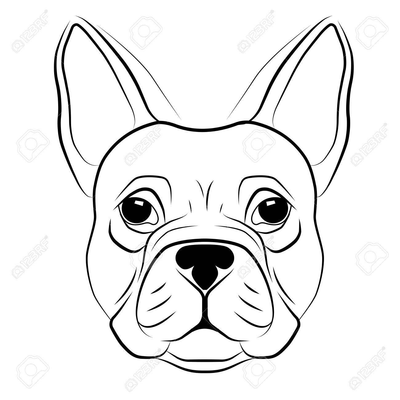 Bulldog Head Drawing At Getdrawings