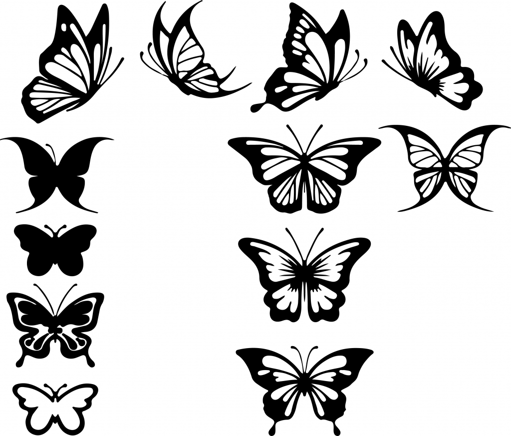 Butterfly Outline Drawing At Getdrawings