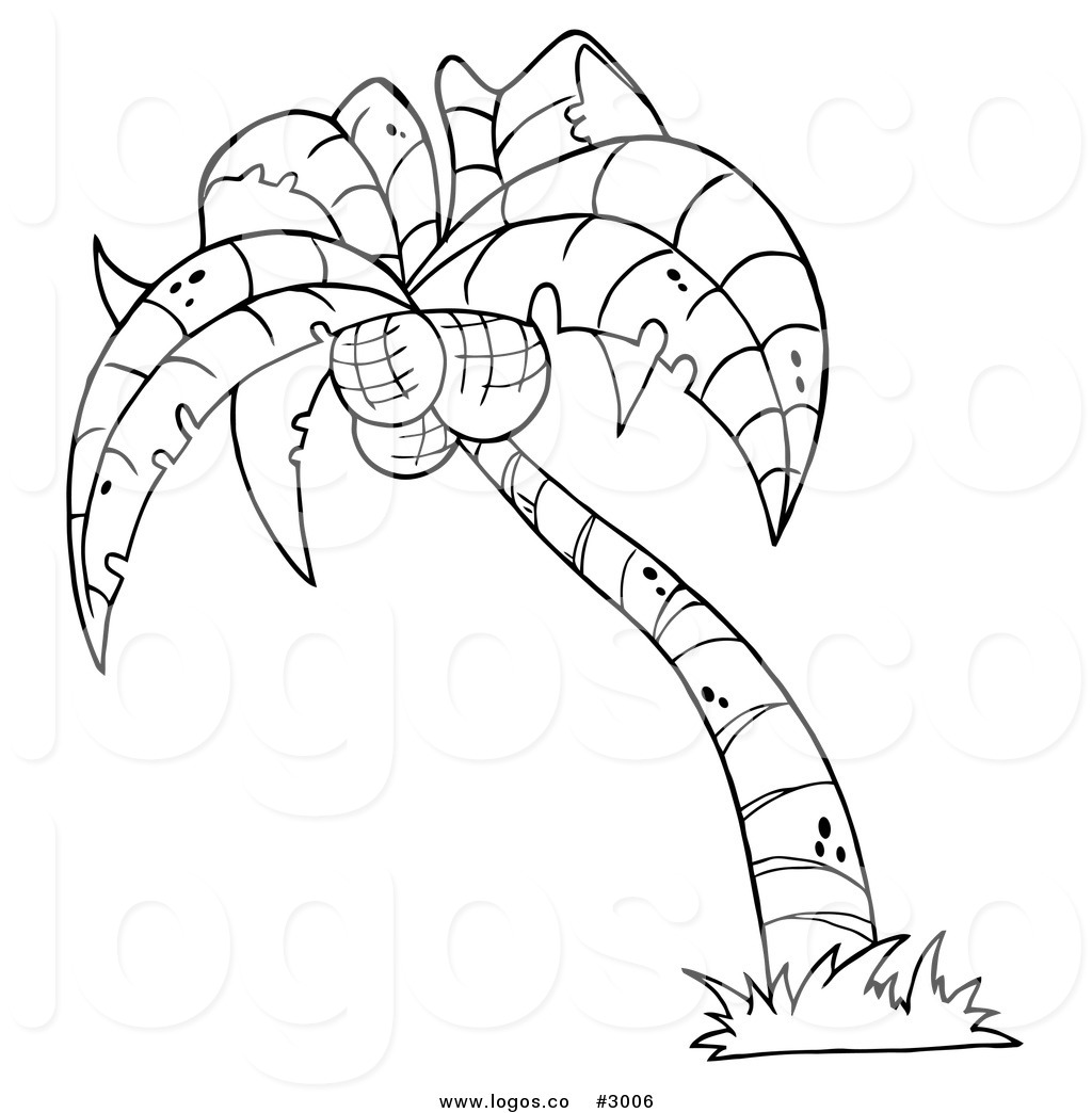 Cartoon Palm Tree Drawing At Getdrawings