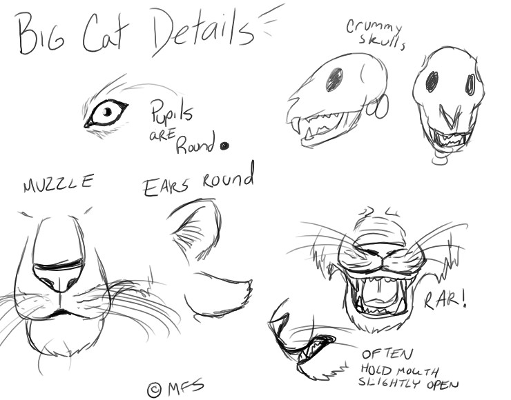 Cat Paws Drawing At Getdrawings Com