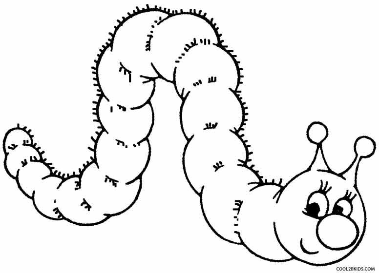 Eric Carle Drawing At Getdrawings Com