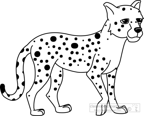 Cheetah Head Coloring Pages Sketch Coloring Page