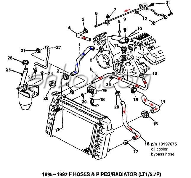 Chevy 350 Lt1 Engine Diagram