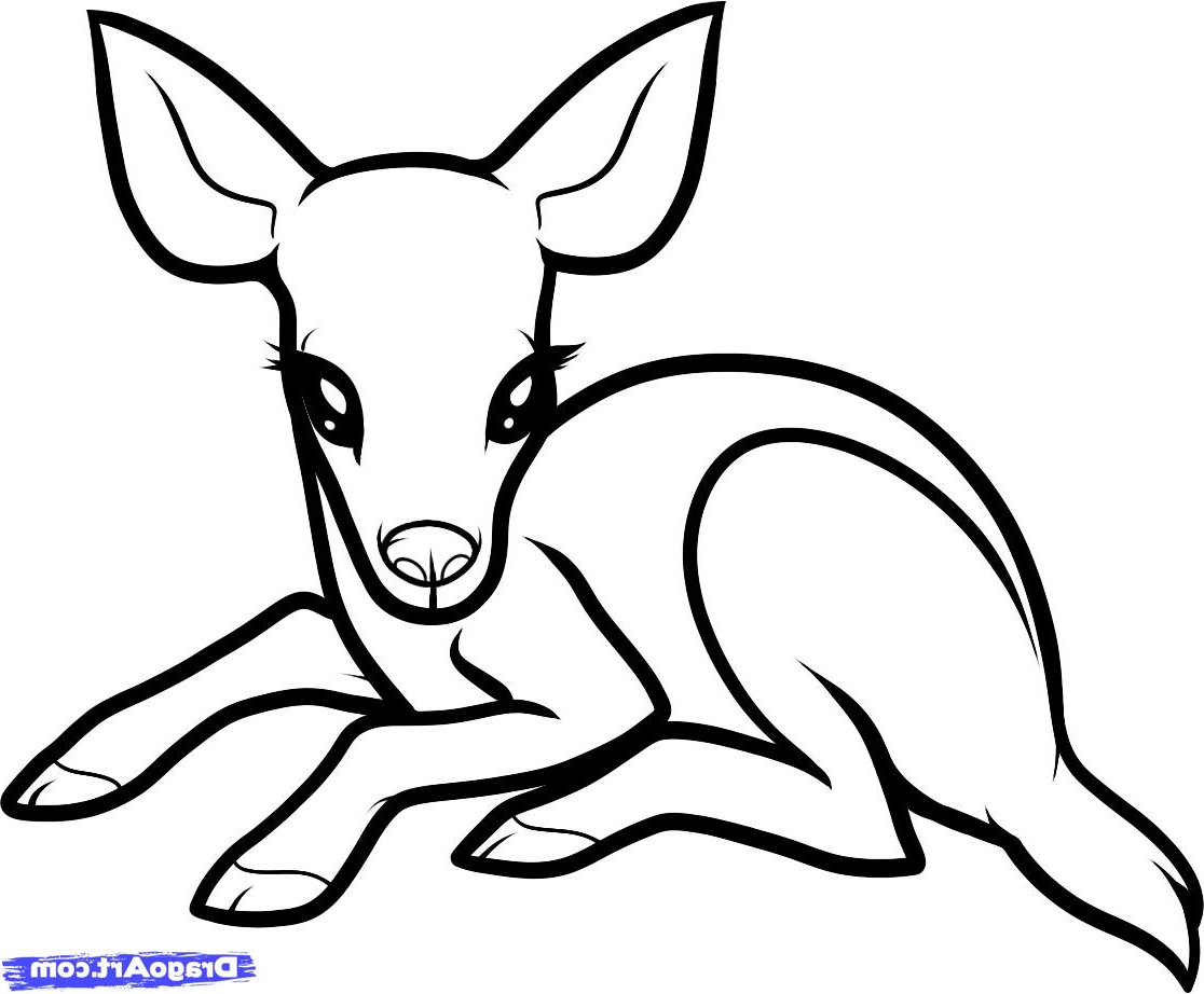 Cute Easy Drawings Of Baby Animals Baby Animal Pictures To Draw