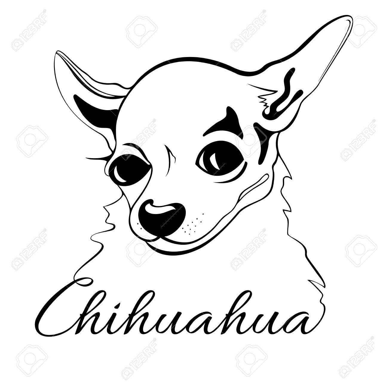 Cute Chihuahua Drawing At Getdrawings