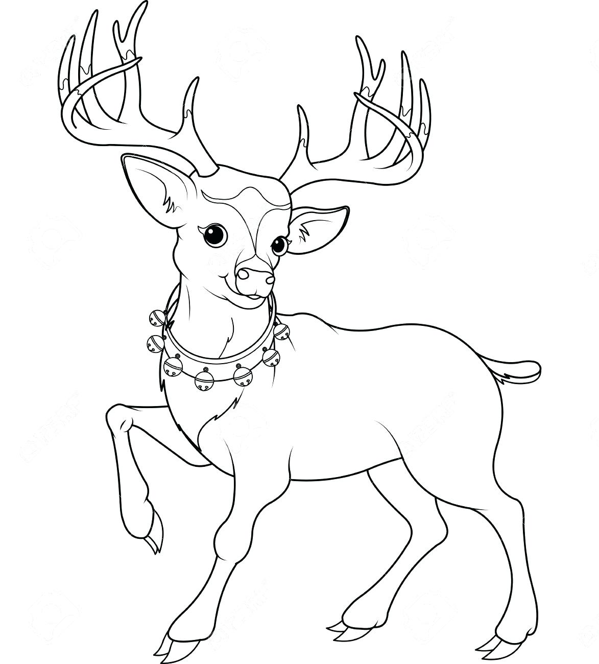Cute Deer Drawing At Getdrawings