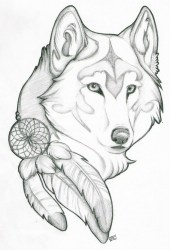 cute drawing drawings easy dog wolf wolves getdrawings