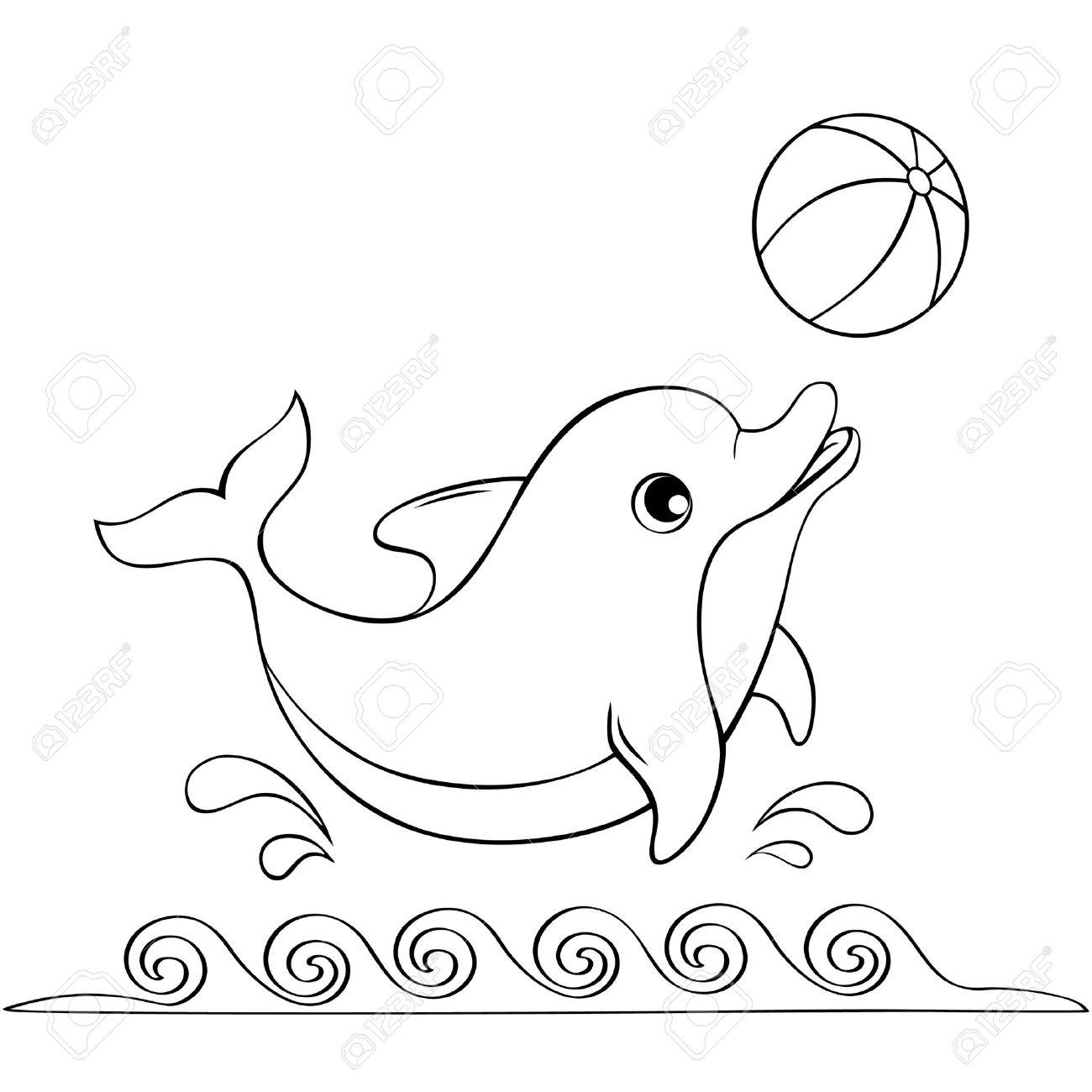 So Cute Dolphins