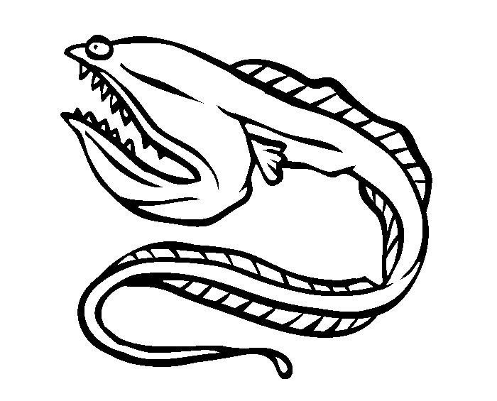 Lobster Cartoon Drawing At Getdrawings Com