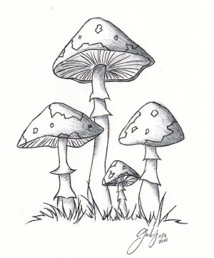 mushroom drawing cartoon drawings mushrooms cool lil pilze deviantart zum ausmalen clipart shroom trippy purple getdrawings coloring sketch graffiti inboundmarketingsummit