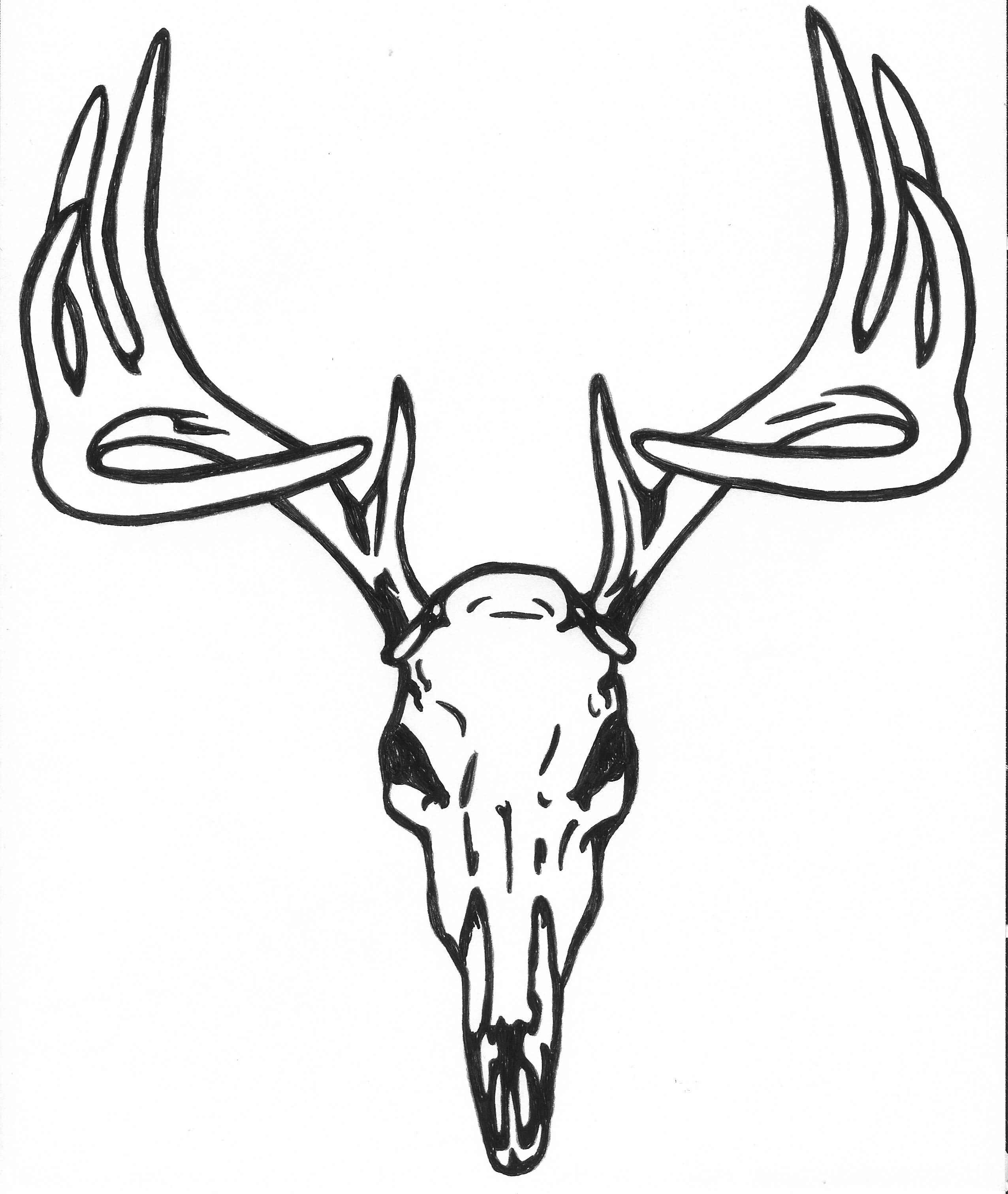 Deer Outline Drawing At Getdrawings