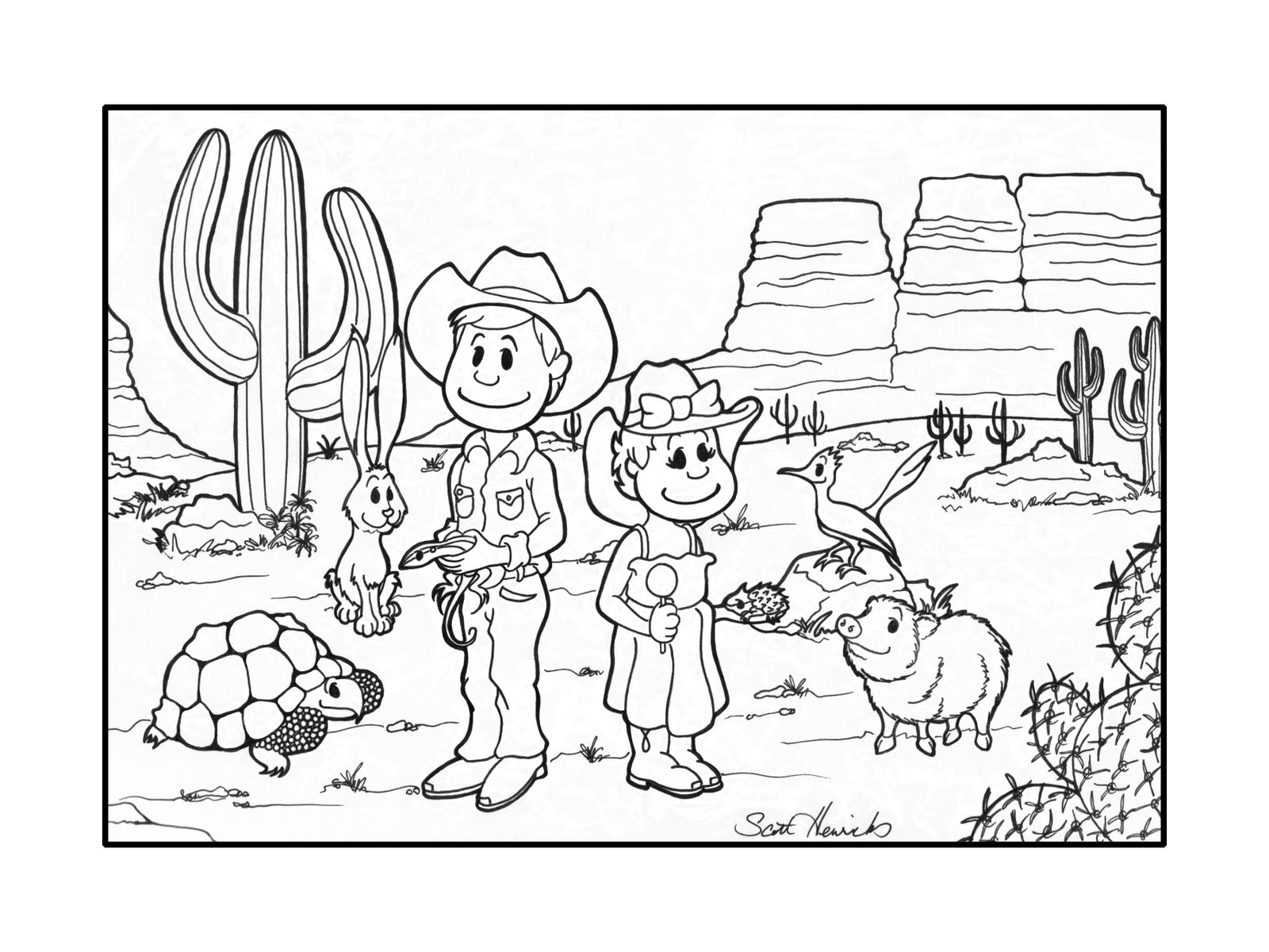Desert Ecosystem Drawing At Getdrawings