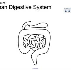 How To Draw A System Diagram Ls3 Ecu Wiring Digestive Drawing At Getdrawings Free For