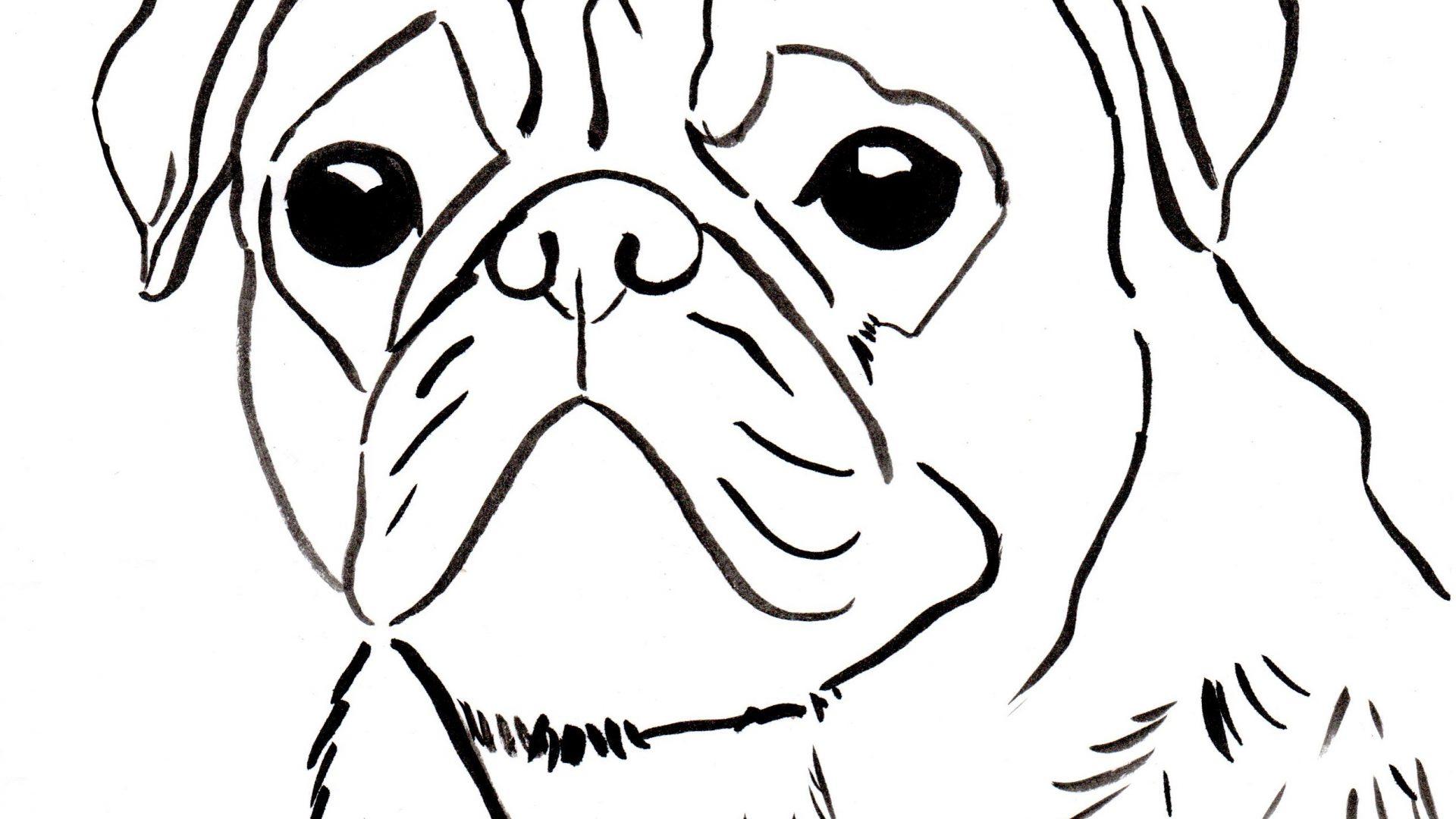Cozy Fun Hissy Rolly Bingo Arf Puppy Dog Pals Coloring Page