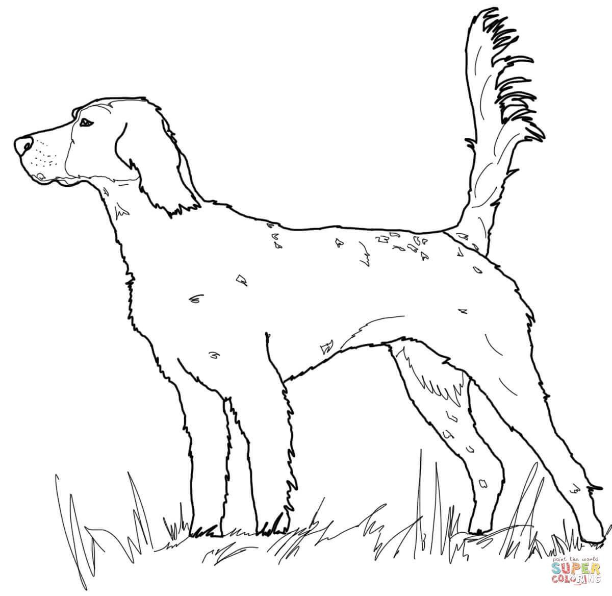 Dog Drawing Games At Getdrawings