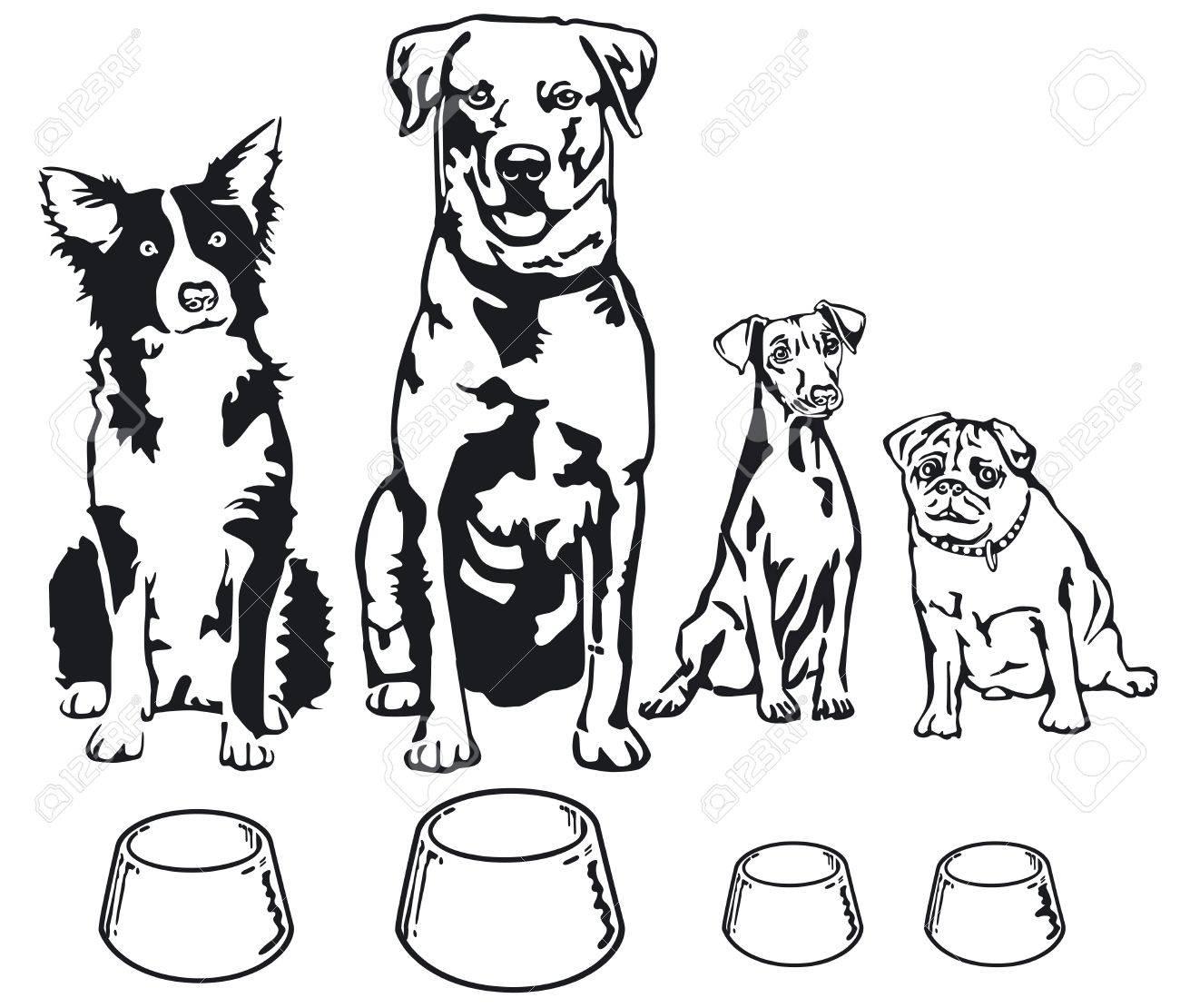 Dog Food Drawing At Getdrawings