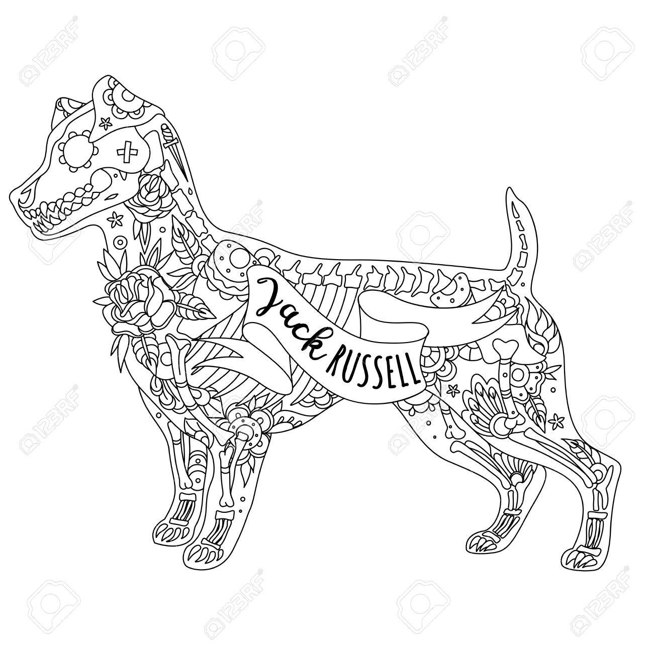 Dog Skeleton Drawing At Getdrawings