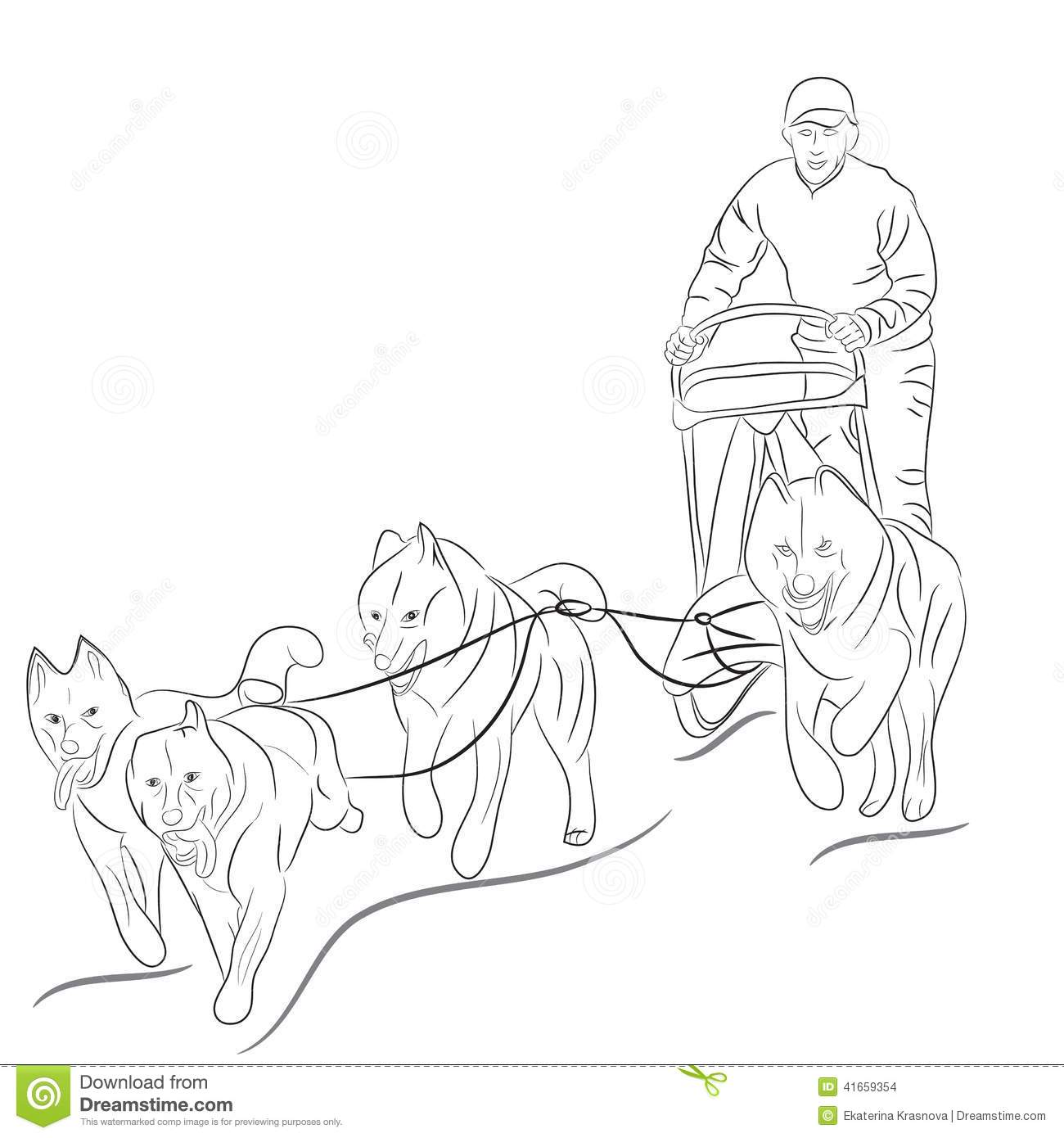 hight resolution of 1300x1390 hand drawn illustration of dogs pulling a sled iditarod