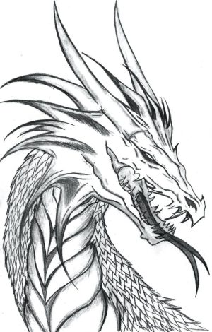 dragon outline drawing head tattoo outlines designs side profile getdrawings