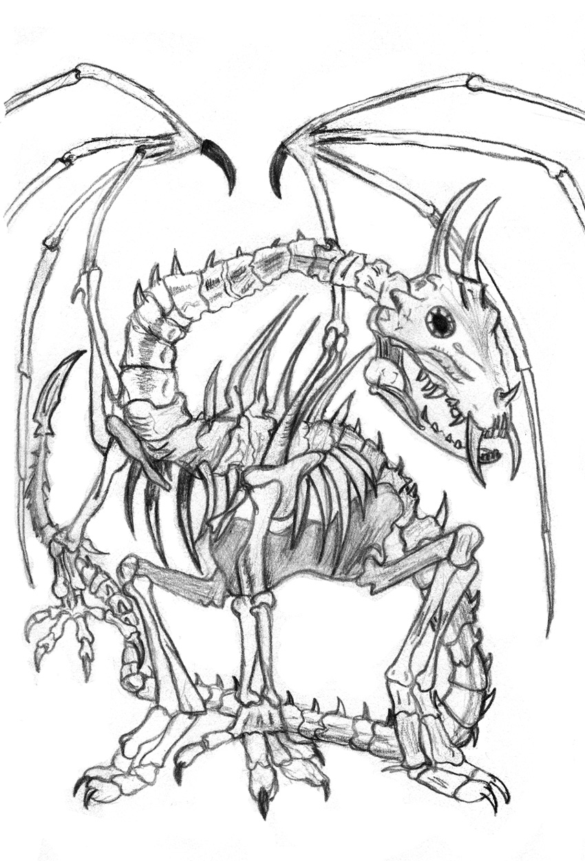 Dragon Skeleton Drawing : dragon, skeleton, drawing, Dragon, Skeleton, Drawing, GetDrawings, Download
