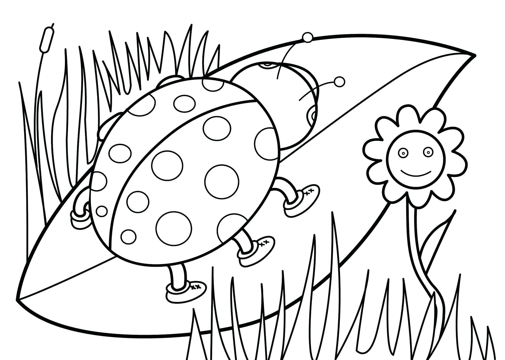 Drawing Worksheet For Kindergarten At Getdrawings