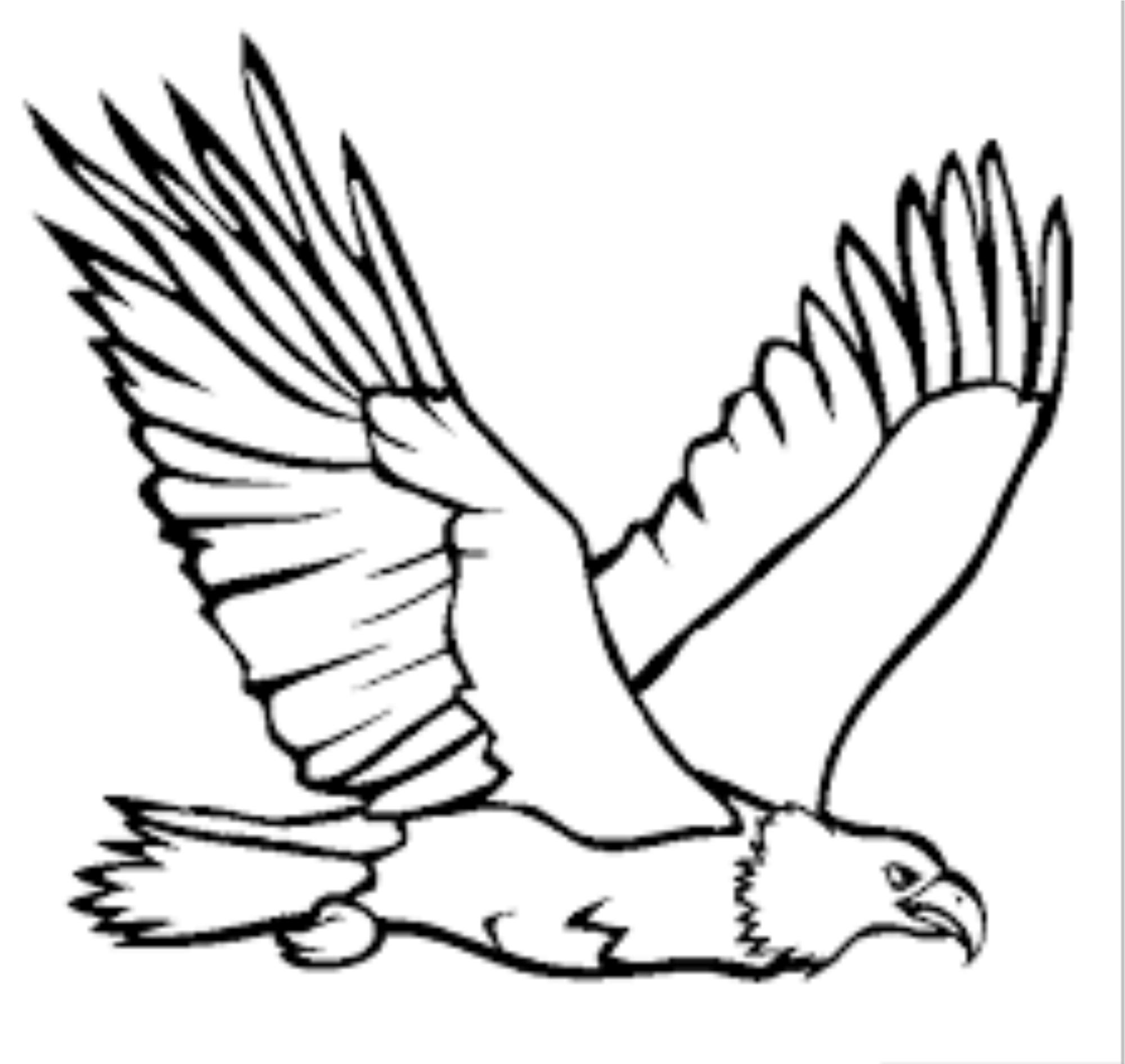 Eagle line drawing at getdrawings free for personal use eagle