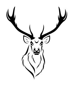 deer easy drawing head getdrawings