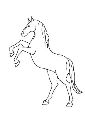 horse drawing horses easy line rearing drawings head draw basic clipart drawn cartoon clip getdrawings pencil