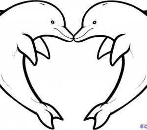 easy draw drawing cool step simple dolphin drawings sketches beginners sketch coloring dolphins getdrawings clipartmag