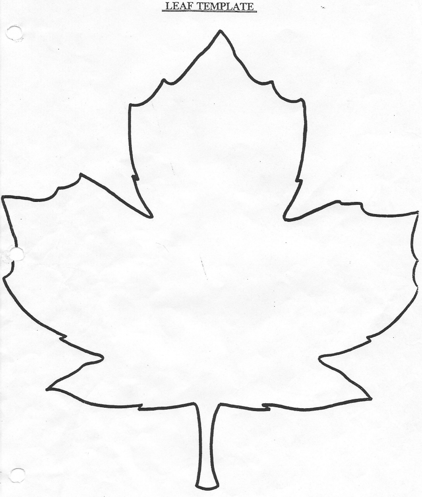Easy Draw Maple Leaves
