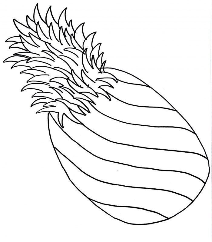 A Pale Pernambuco Pineapple Coloring Page