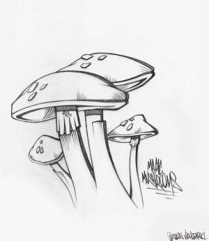 mushrooms magic mushroom trippy easy drawing simple draw drawings hand deviantart getdrawings vector