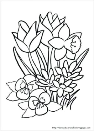 elderly drawing coloring pages adults simple seniors older books getdrawings