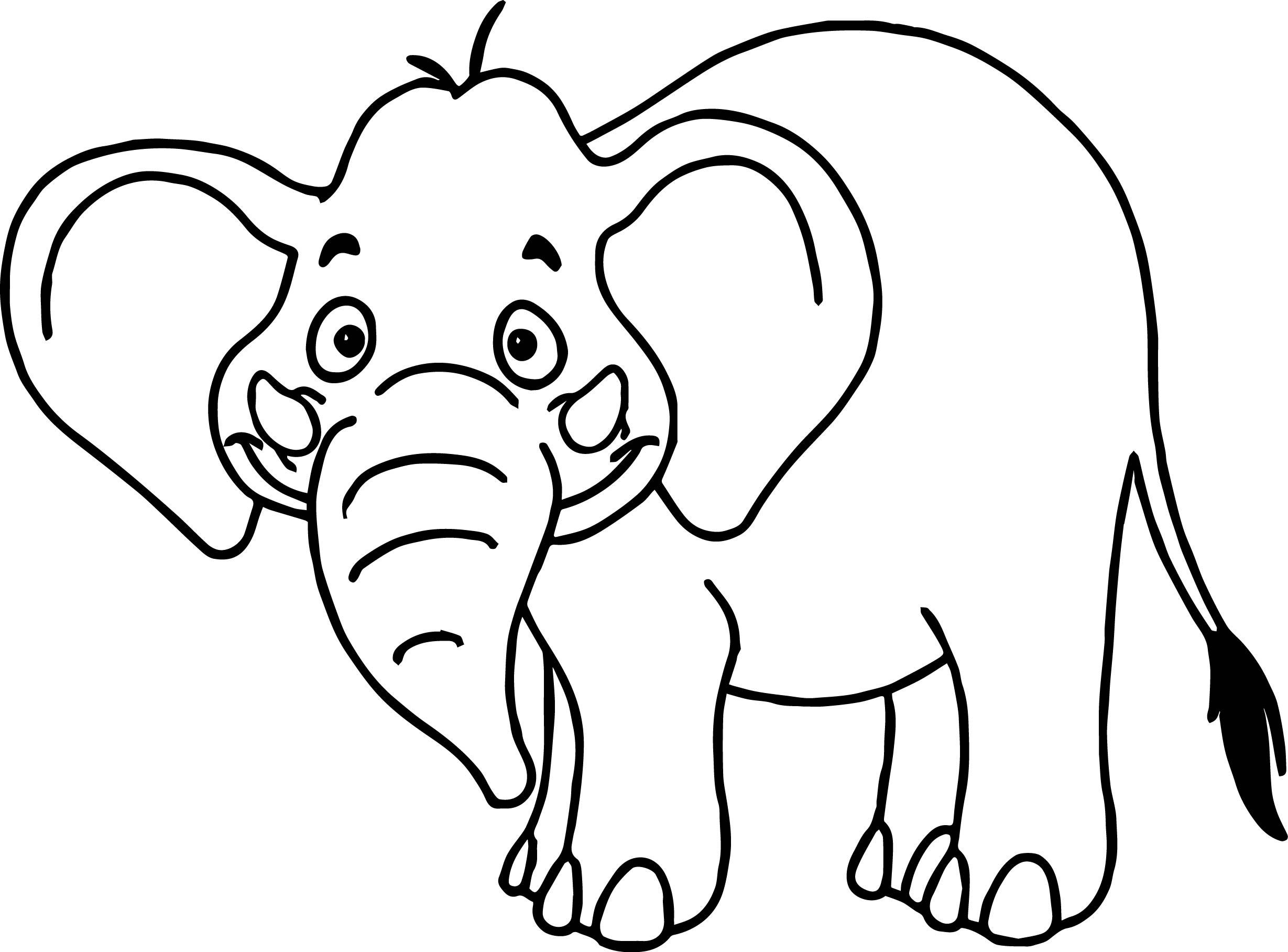 Elephant Cartoon Drawing At Getdrawings