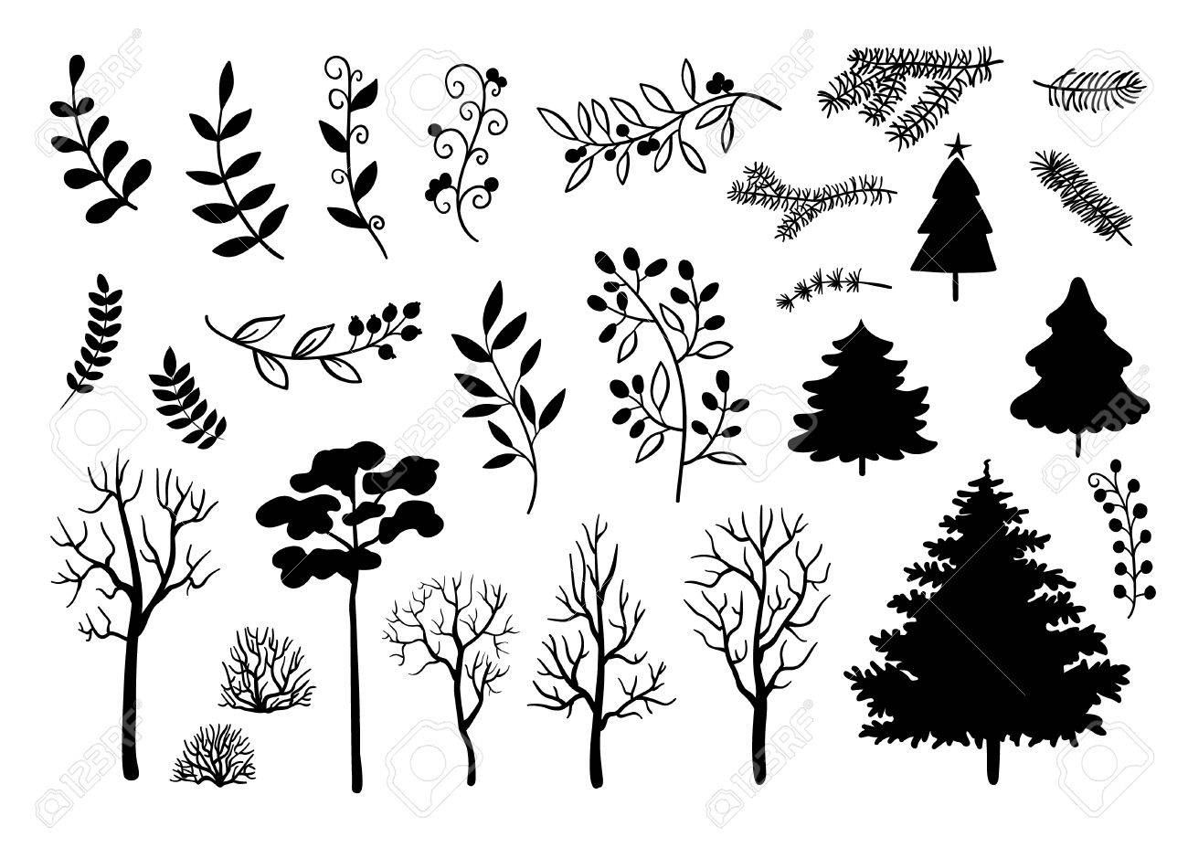 Evergreen Trees Drawing At Getdrawings