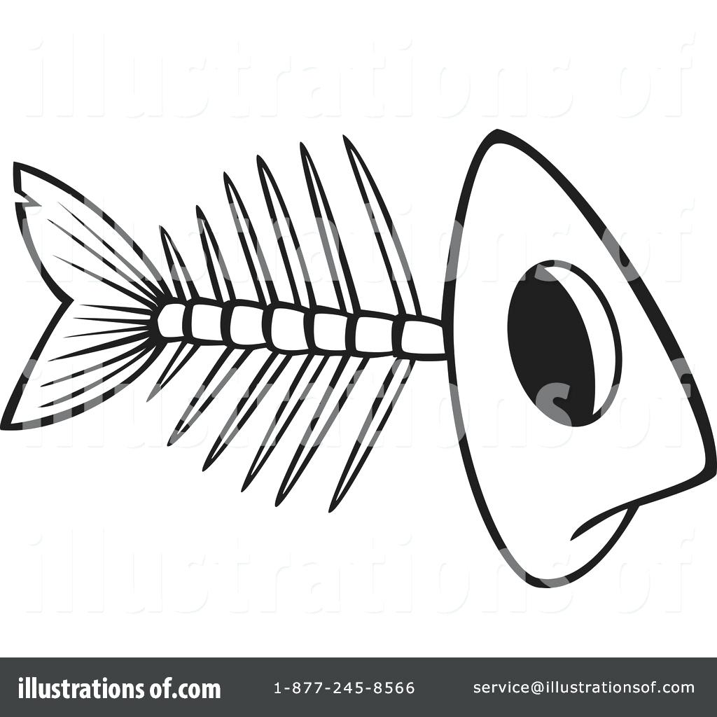 Fish Bone Drawing At Getdrawings