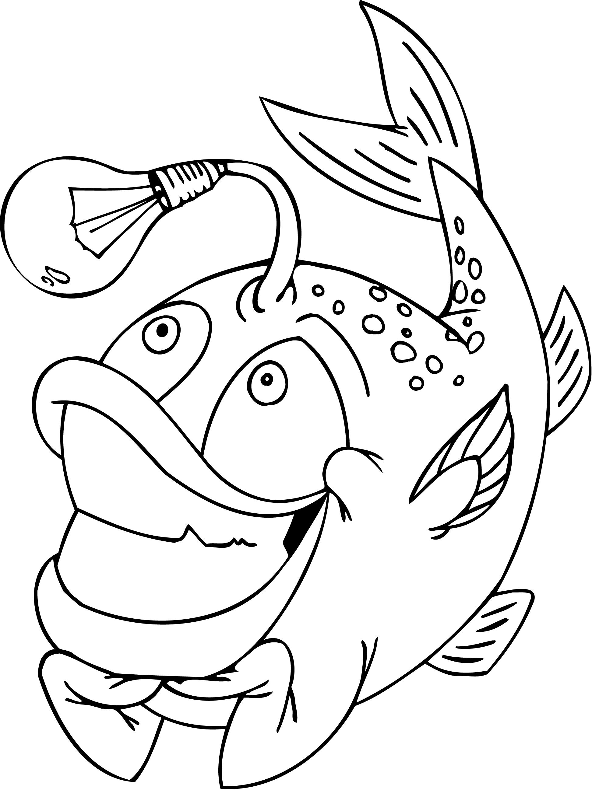 Fish Head Drawing At Getdrawings