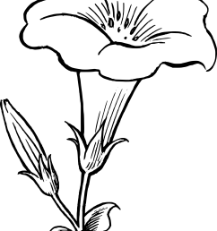 flower line drawing clip art free [ 1969 x 2756 Pixel ]