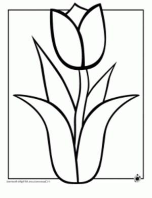 flower easy flowers drawing coloring pages draw drawings hawaiian simple popular common variations bestappsforkids spring getdrawings colouring hawaii printable paintingvalley