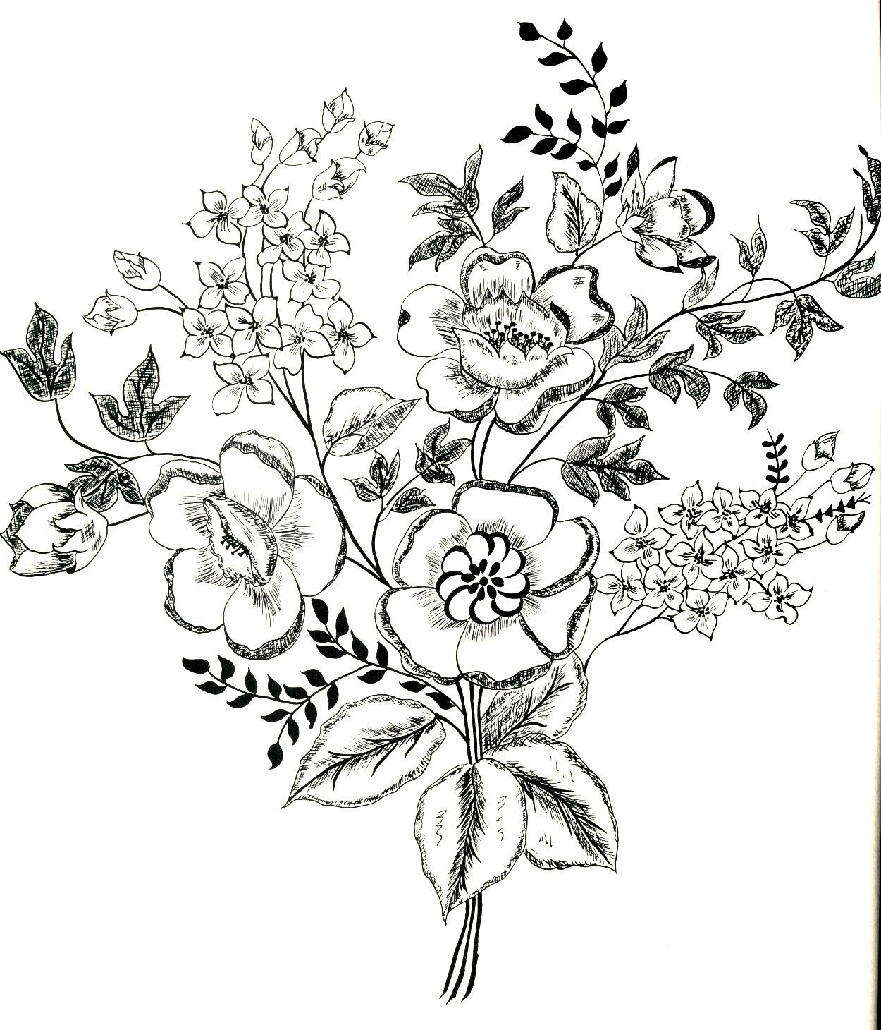 Flowers Line Drawing At Getdrawings