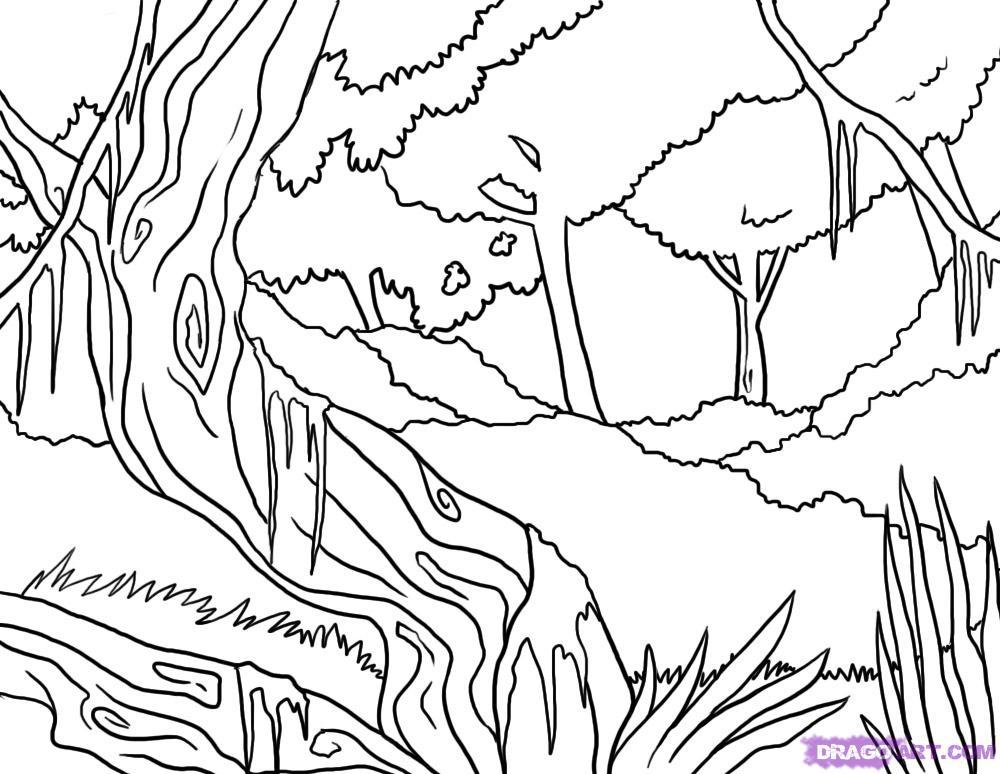 Jungle Drawing For Kids At Getdrawings Com