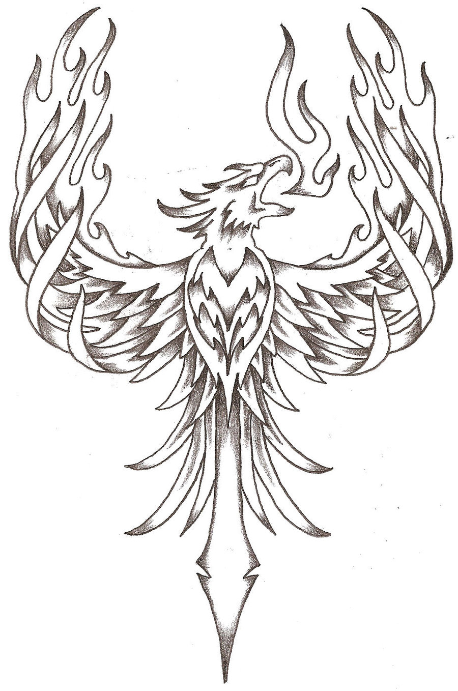 The best free Firebird drawing images. Download from 59
