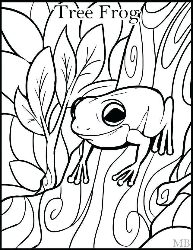 How To Draw A Tree Frog Step By Step 2018 New Coloring